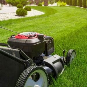 Following a regular mowing schedule is important to your summer lawn care here in Bear City, DE.