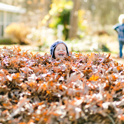 Fall cleanup, liking raking your leaves, is essential to giving your Bear, DE lawn the boost it needs to stay healthy through the winter.