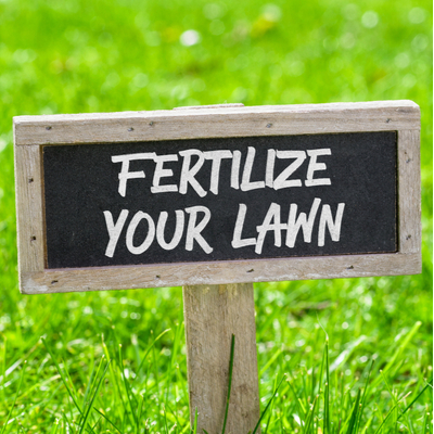 One of the best lawn care tips for 2020 is to fertilize your lawn.